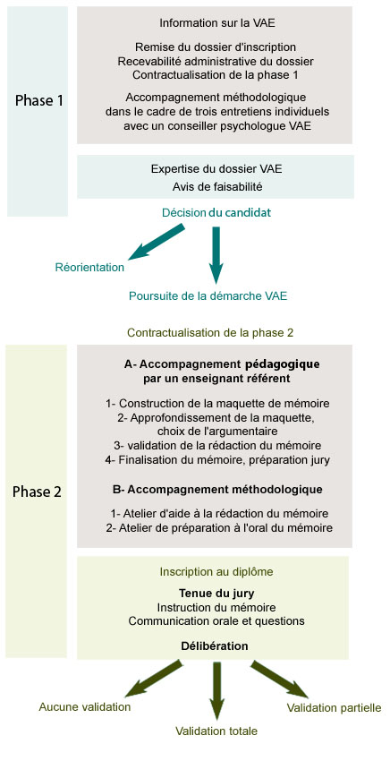 Déroulement phases VAE