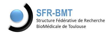 logo_SFR-BMT